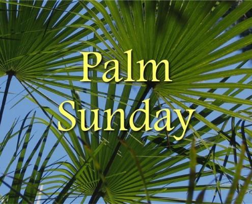 Sermons - Palm Sunday (Custom)